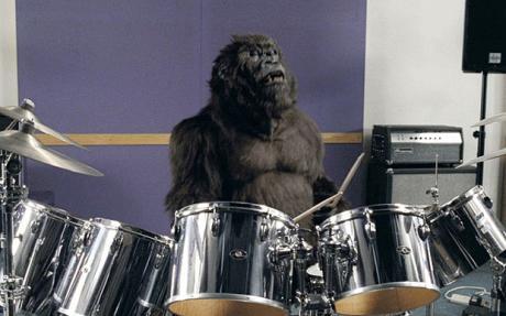 Gorilla Cadbury